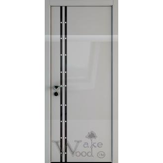 Двери Glass SV 02