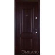 Двери Maestro